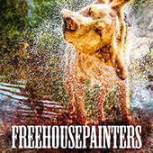 FREE HOUSE PAINTERS
