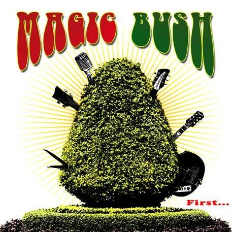 MAGIC BUSH